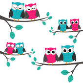 Owls_couples — Stockvector