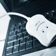 Stock Photo: Ethernet adapter