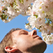 Stock Photo: Hay fever