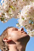 Hay fever — Stock Photo