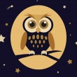 Night Owl — Stock Vector