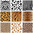 Animal Skins — Vector de stock #6503886