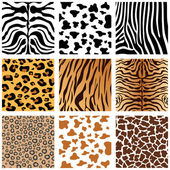 Animal Skins — Vector de stock