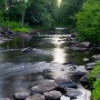 Little AuSable River - Stock fotografie