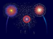 Fireworks Display — Stock Vector