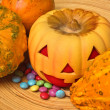 Pumpklin Greedy — Stock Photo #6003164