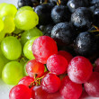 Delicious Grapes — Stock Photo