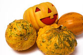 Prank Pumpkin — Stock Photo