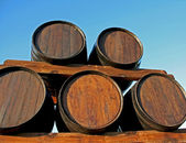 Wine wood casks — Stock Photo