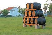 Wood casks on the grass — Stock Photo