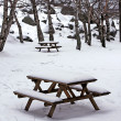 Stock Photo: Snow on wooden benches at the park