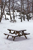 Snow on wooden benches at the park — Stock Photo