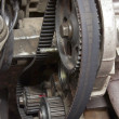 Stock Photo: Transmission Belt