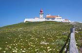 Roca cape lighthouse — Stock Photo
