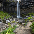 Svartifoss Waterfall, Iceland - Stock Photo