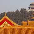 Jinshang Park from Forbidden City Yellow Roofs Gugong Palace Bei — Foto de Stock