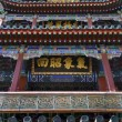 Longevity Hill Tower of the Fragrance of the Buddha Close Up Sum — Stock Photo