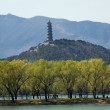 Yu Feng Pagoda Summer Palace Willows Beijing China — Stock Photo
