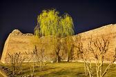 City Wall Park with Willow Tree Beijing China — Stock Photo