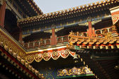 Roofs Figures Yonghe Gong Buddhist Temple Beijing China — Stock Photo