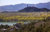 Yu feng pagody z lonevity wzgórza yiheyuan pekin willows — Zdjęcie stockowe