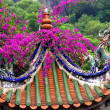 Stock Photo: Dragon Roof Taoist Temple Xiamen China