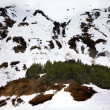 Snow Mountains Brown Seward Highway Anchorage Alaska — Stock Photo
