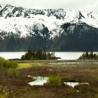 Snow Mountain Landscape Seward Highway Anchorage Alaska — Stock Photo
