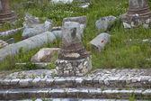 Forum jül sezar'ın kalıntıları kırmızı poppies bahar çiçekleri roma i̇talya — Stok fotoğraf