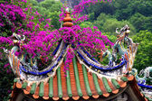 Dragon Roof Taoist Temple Xiamen China — Stock Photo