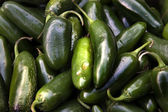 Green Jalapeno Chili Peppers — Stock Photo