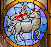 Lamb with Cross Stained Glass Duomo Cathedral Basilica Florence — Stock Photo