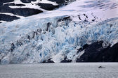 Blue Portage Glacier Lake Anchorage Alaska — Stock Photo