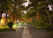 Red Lanterns Temple of the Sun Park Beijing China Night — Stock Photo