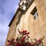White Stone Church Red Bouganvillea Mexico — Stock Photo #6110393