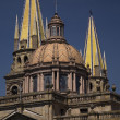 Metropolitan Cathedral Guadalajara Mexico — Stock Photo