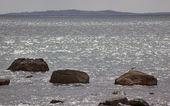 Cuttyhunk eiland van westport massachusetts oceaan zeemeeuw rotsen — Stockfoto