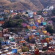 Many Colored Houses Guanajuato Mexico — Stock Photo