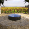 Garden Fountain Vineyards Fog Tree NapCalifornia — Stock Photo #6127451