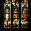 Saints Pope Stained Glass Long St. Patrick's Cathedral New York — Zdjęcie stockowe #6127548