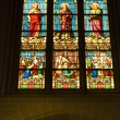 Stained Glass Statues St. Patrick's Cathedral New York City — Stock Photo