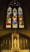 Christ Shrine Manger Birth Stained Glass Statue St. Patrick's Ca — Stock Photo