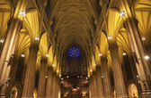St. Patrick's Cathedral Insides New York City — Stock Photo