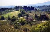 Toscaanse boerderij wijngaard san gimignano toscane italië — Stockfoto
