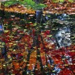 Lily Pads Trees Reflection Abstract Green Red Blue Van Dusen Gar — Stock Photo