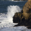 White Surf Cliffs Point Lobos Seal Rocks San Francisco Californi - Stock Photo