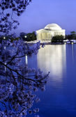 Jefferson Memorial with Cherry Blossoms — Stock Photo