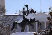 Jackson staty lafayette park monument vita huset efter snö wa — Stockfoto