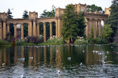 Seagulls Water Reflections Palace of Fine Arts Museum San Franci — Stock Photo