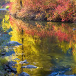 Deep Fall Colors Wenatchee River Stevens Pass Leavenworth Washin - Stockfoto